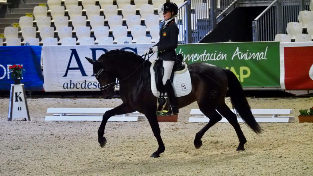 World Young Horse Championships in Verden 2021