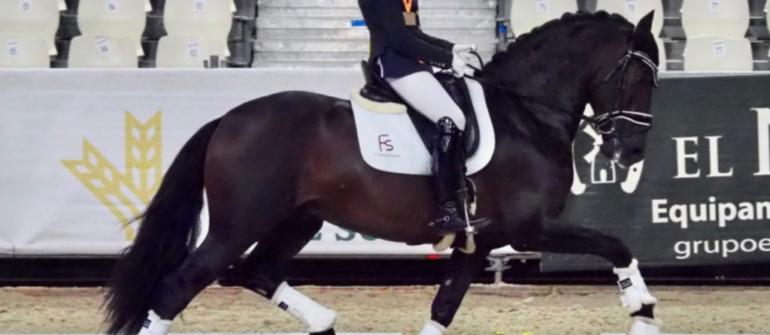 Campeonato del Mundo de caballos jóvenes de Doma Clásica 2021